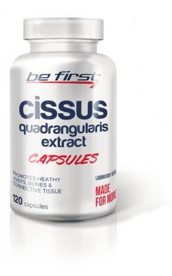 Cissus Quadrangularis Extract Capsules - купить за 650