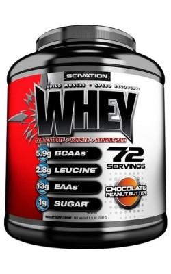 Whey 2,27 кг Scivation - купить за 4640