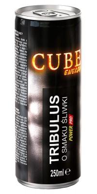 Tribulus Cube Energy 250 мл PowerPro